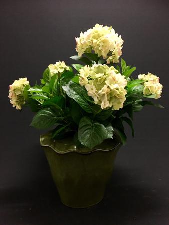 GroenCreme Hydrangea(Hortensia) H53cm D45cm 5 bloemen en 134 bladeren