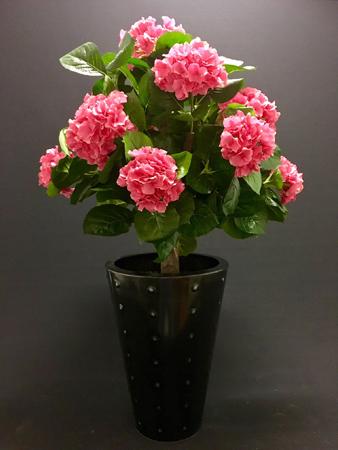 Roze Hydrangea (Hortensia) op stam H62cm 13 bloemen 197 bladeren